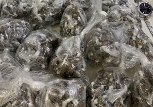 Rondesp Atlântico apreende quase mil porções de drogas