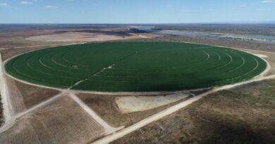 Documentário mostra potencialidades do Polo Agroindustrial do Médio São Francisco